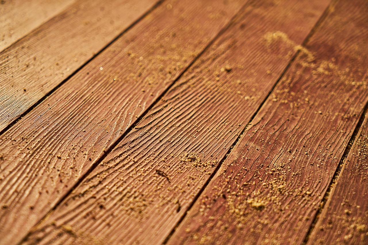 Najlepsza firma usuwająca korniki i inne szkodniki drewna